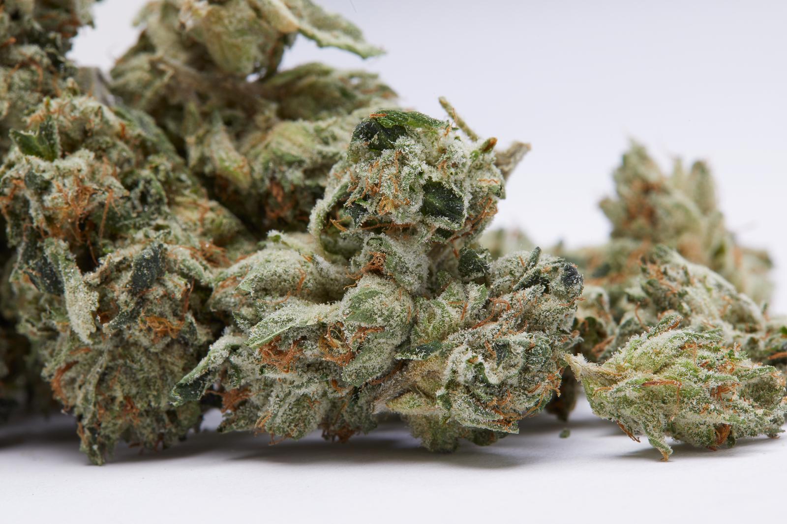 rosin tech weed nugs