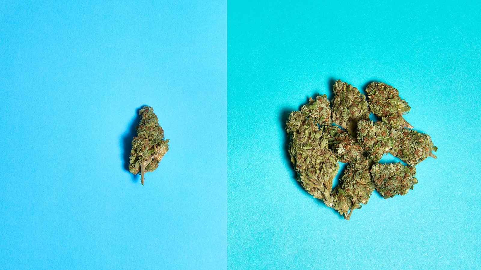 one gram vs a quarter of weed