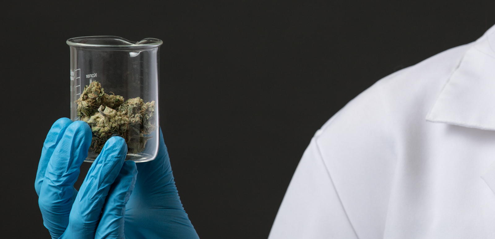medical cannabis and cancer